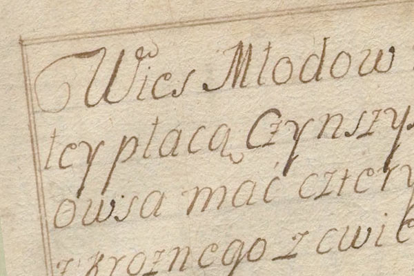 Miodów – tax census 1754 year